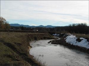 WDC1_OV_downstream